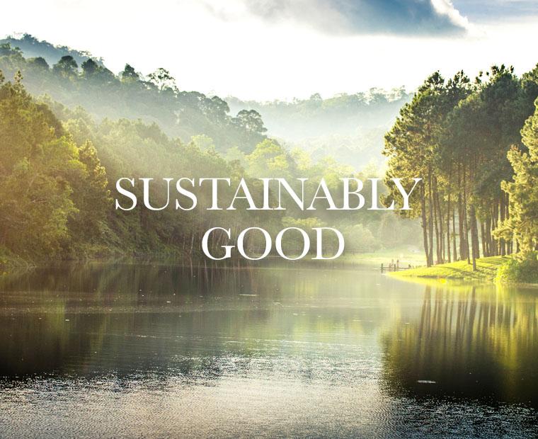 Sustainably Good Handy